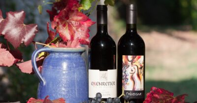 ワインとブドウ①