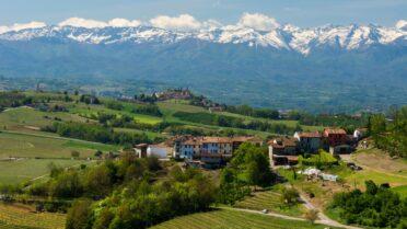 イタリアワイン⑤
