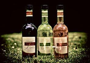 ワイン産地⑦