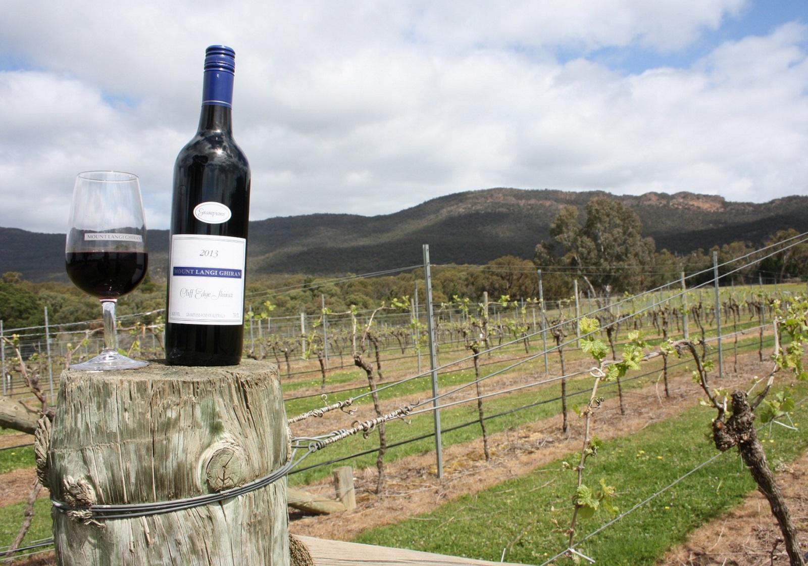 畑とワイン